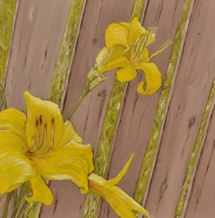 """Yellow Daylilies - Flowers by a Fence #2 (2013) - 12x12"""", oil on board (sold)"""