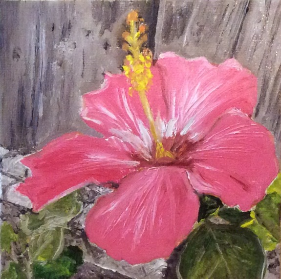 "Hibiscus (2017) - 6x6"", oil on canvas"