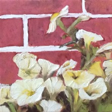 """Petunias (2017) - 6x6"""", oil on canvas (sold)"""