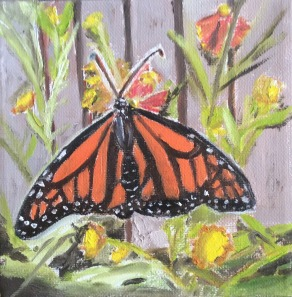 """Monarch Butterfly 1 (2021) - 6x6"""", oil on canvas (sold)"""
