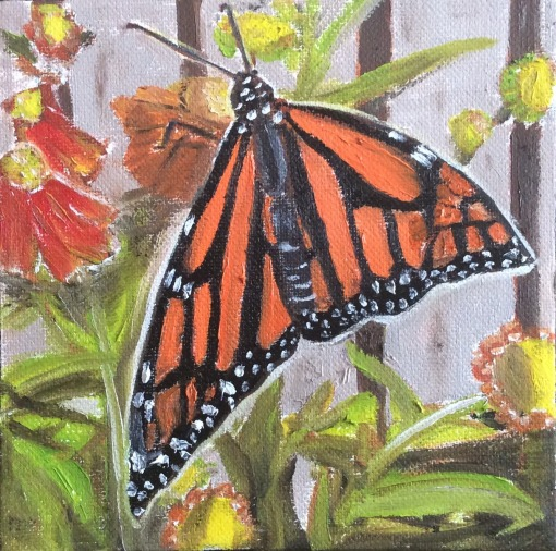 """Monarch Butterfly 3 (2021) - 6x6"""", oil on canvas (sold)"""